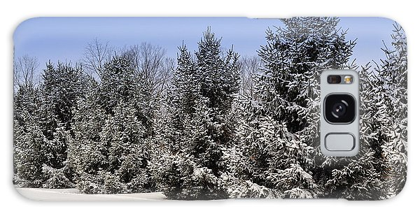 Evergreen Trees In Winter Galaxy Case