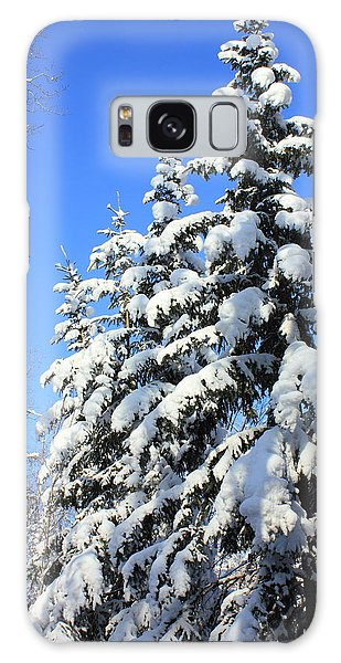 Evergreen Trees In Winter Galaxy Case by Jim Sauchyn