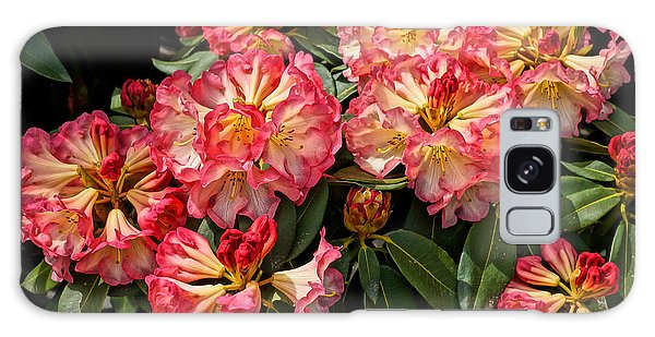 Exploding Rhodies Galaxy Case by Ronda Broatch