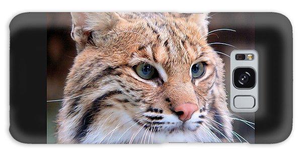 Eyes Of A Lynx Galaxy Case