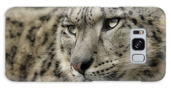 Eyes Of A Snow Leopard Galaxy Case