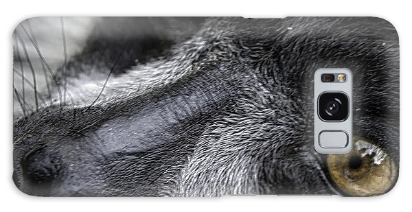 Eyes Of The Lemur Galaxy Case
