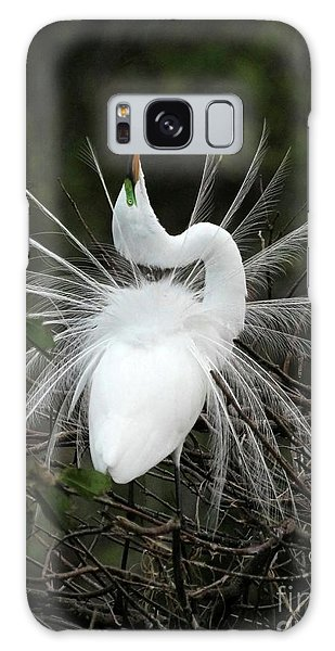 Fabulous Feathers Galaxy Case