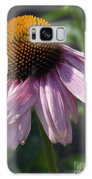 Fading Coneflower Galaxy Case