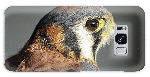 Falcon Galaxy Case