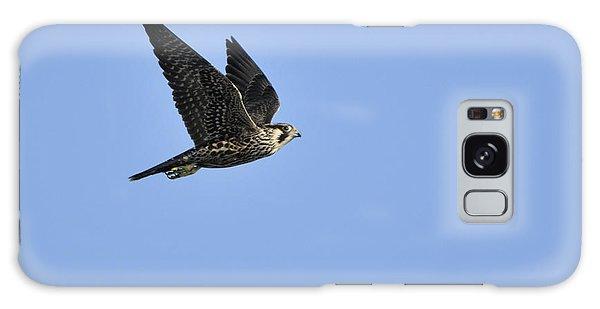 Falcon In Flight Galaxy Case