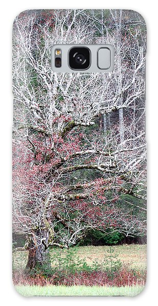 Fall At Cades Cove Galaxy Case