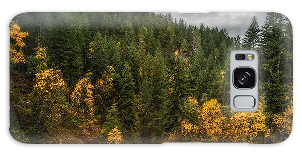 Fall At Silver Falls Galaxy Case