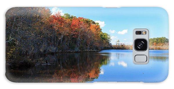 Fall At Turkel Pond Galaxy Case by Robert Pilkington