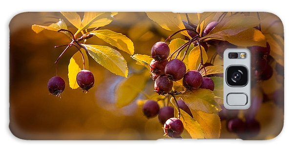 Fall Berries Galaxy Case by Janis Knight