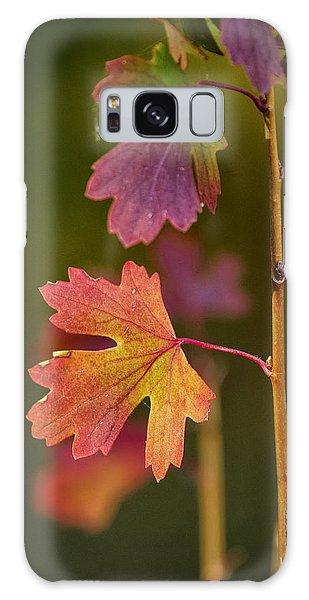Fall Branch Galaxy Case