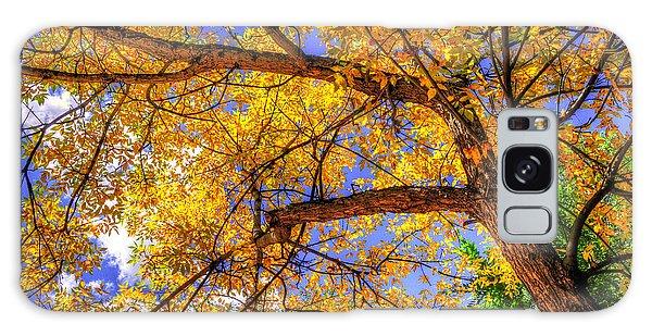 Fall Canopy 12167 Galaxy Case