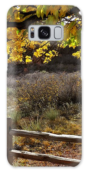 Fall Canopy And Fence 12476 Galaxy Case