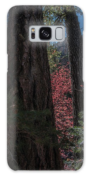 West Fork Perspective Galaxy Case