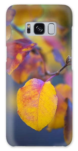 Fall Color Galaxy Case by Stephen Anderson