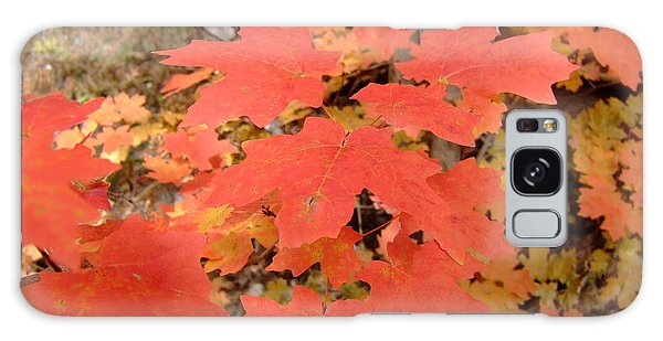 Fall Colors 6308 Galaxy Case
