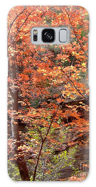 Fall Colors 6335 Galaxy Case