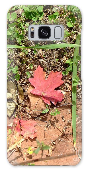 Fall Colors 6342 Galaxy Case