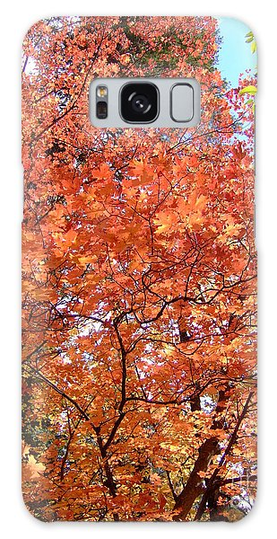 Fall Colors 6357 Galaxy Case