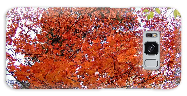 Fall Colors 6359 Galaxy Case