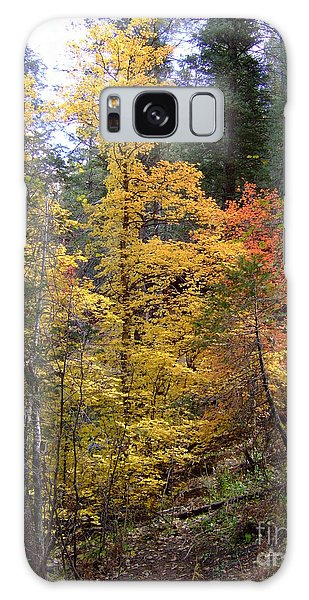 Fall Colors 6368 Galaxy Case