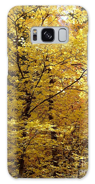 Fall Colors 6371 Galaxy Case