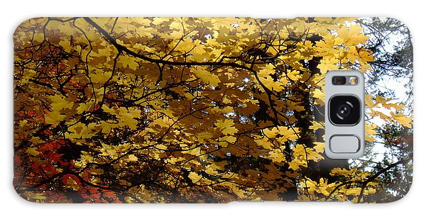Fall Colors 6372 Galaxy Case