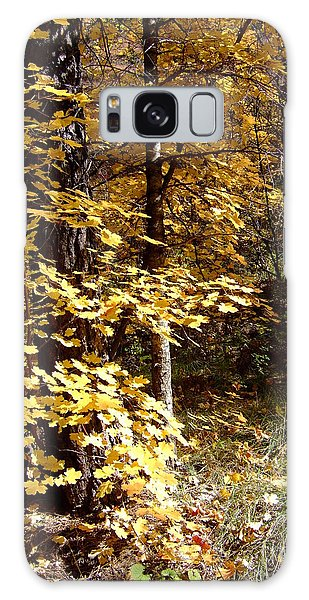 Fall Colors 6404 Galaxy Case