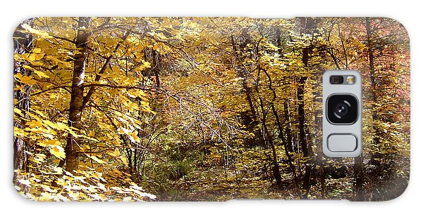 Fall Colors 6405 Galaxy Case
