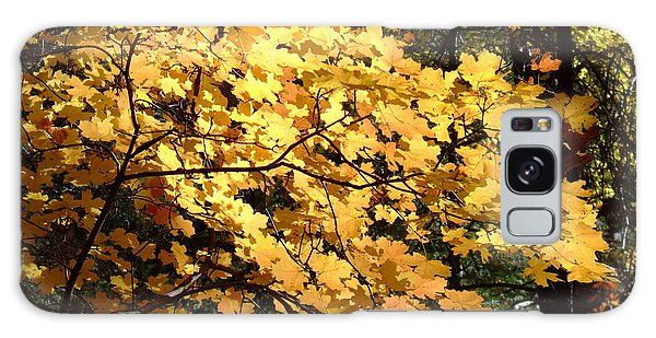 Fall Colors 6407 Galaxy Case