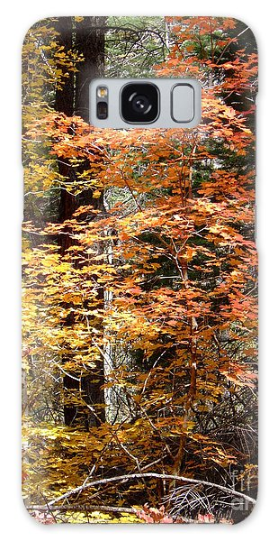 Fall Colors 6412 Galaxy Case