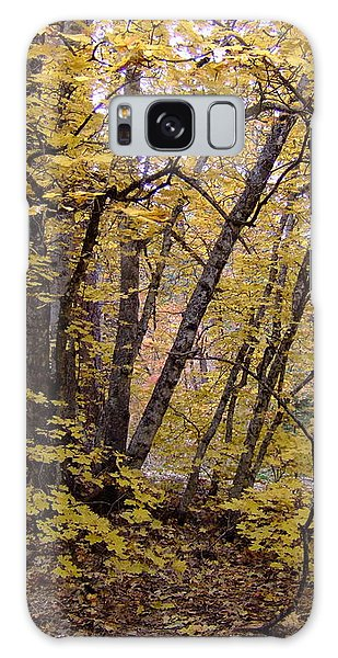 Fall Colors 6435 Galaxy Case