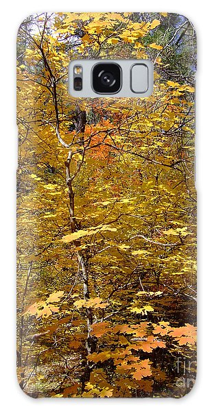 Fall Colors 6446 Galaxy Case