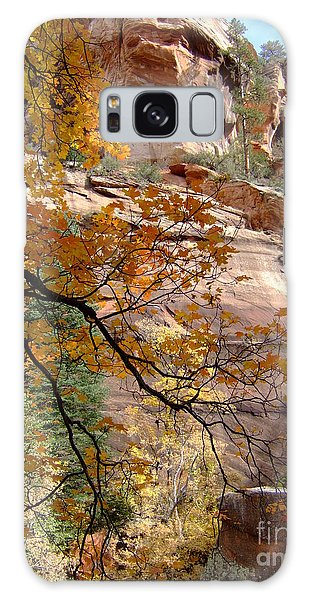 Fall Colors 6497 Galaxy Case