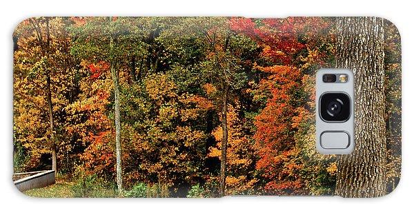 Fall Colors Galaxy Case by Debra Crank