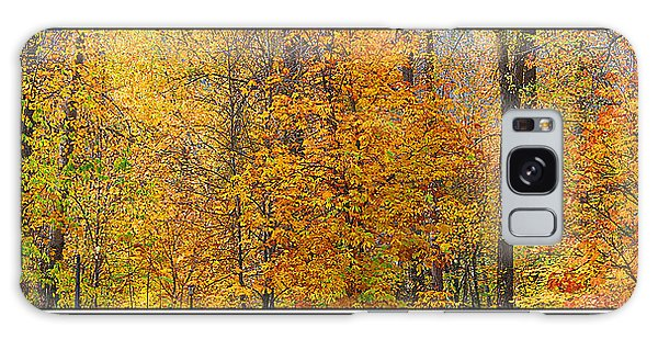 Fall Colors Galaxy Case by John Bushnell