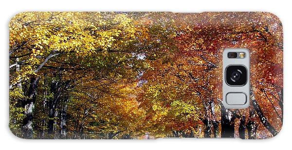 Fall Colors Near Sister Bay Galaxy Case