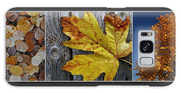 Fall Colors Triptych Galaxy Case by Patricia Strand