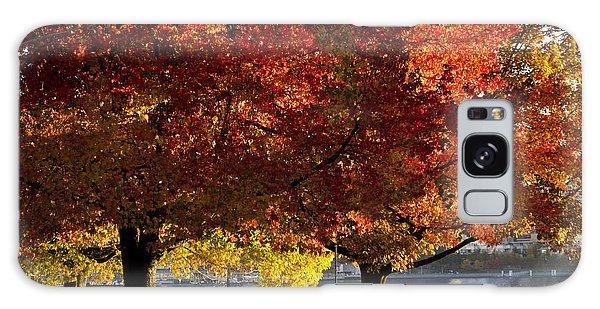Fall Colour In Stanley Park Galaxy Case by Maria Janicki