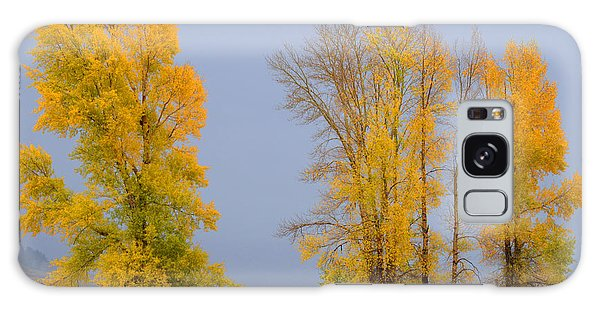 Fall Comes To The Lamar Valley Galaxy Case