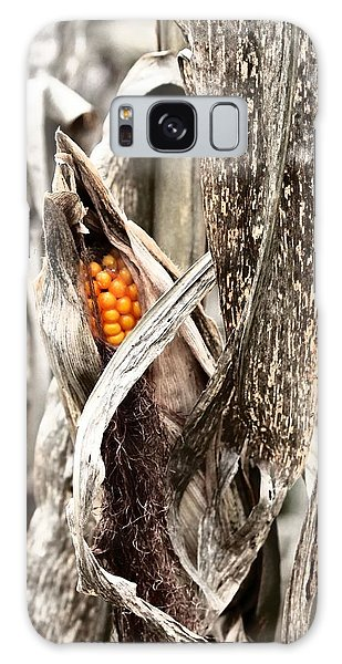 Fall Corn Galaxy Case