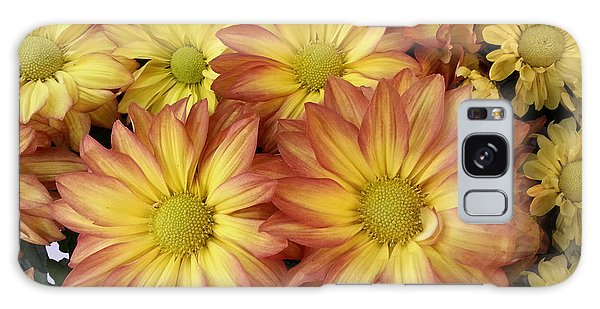 Fall Daisies Galaxy Case by Donna Brown
