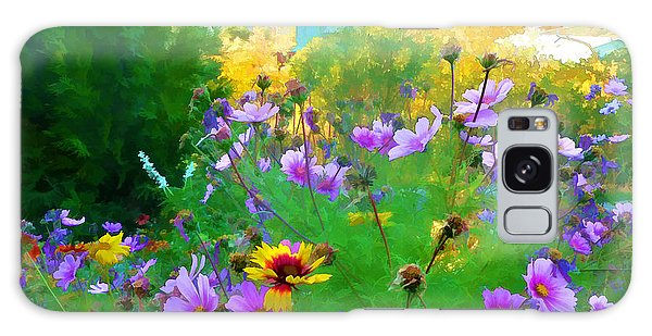 Fall Enters The Garden No 2 Galaxy Case
