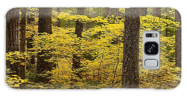 Fall Foliage Galaxy Case by Belinda Greb