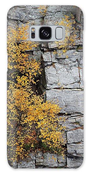 Fall Foliage Colors 01 Galaxy Case