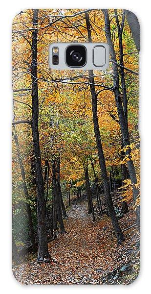 Fall Foliage Colors 03 Galaxy Case