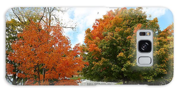 Fall Foliage Colors 09 Galaxy Case