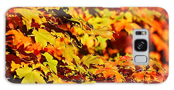 Fall Foliage Colors 13 Galaxy Case