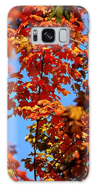 Fall Foliage Colors 15 Galaxy Case