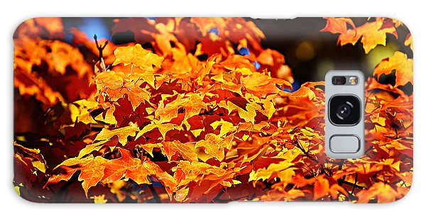 Fall Foliage Colors 16 Galaxy Case